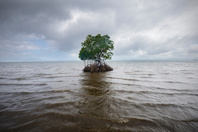 Kadir van Lohuizen | Climate change / sea-level rise in Fiji, 2012
