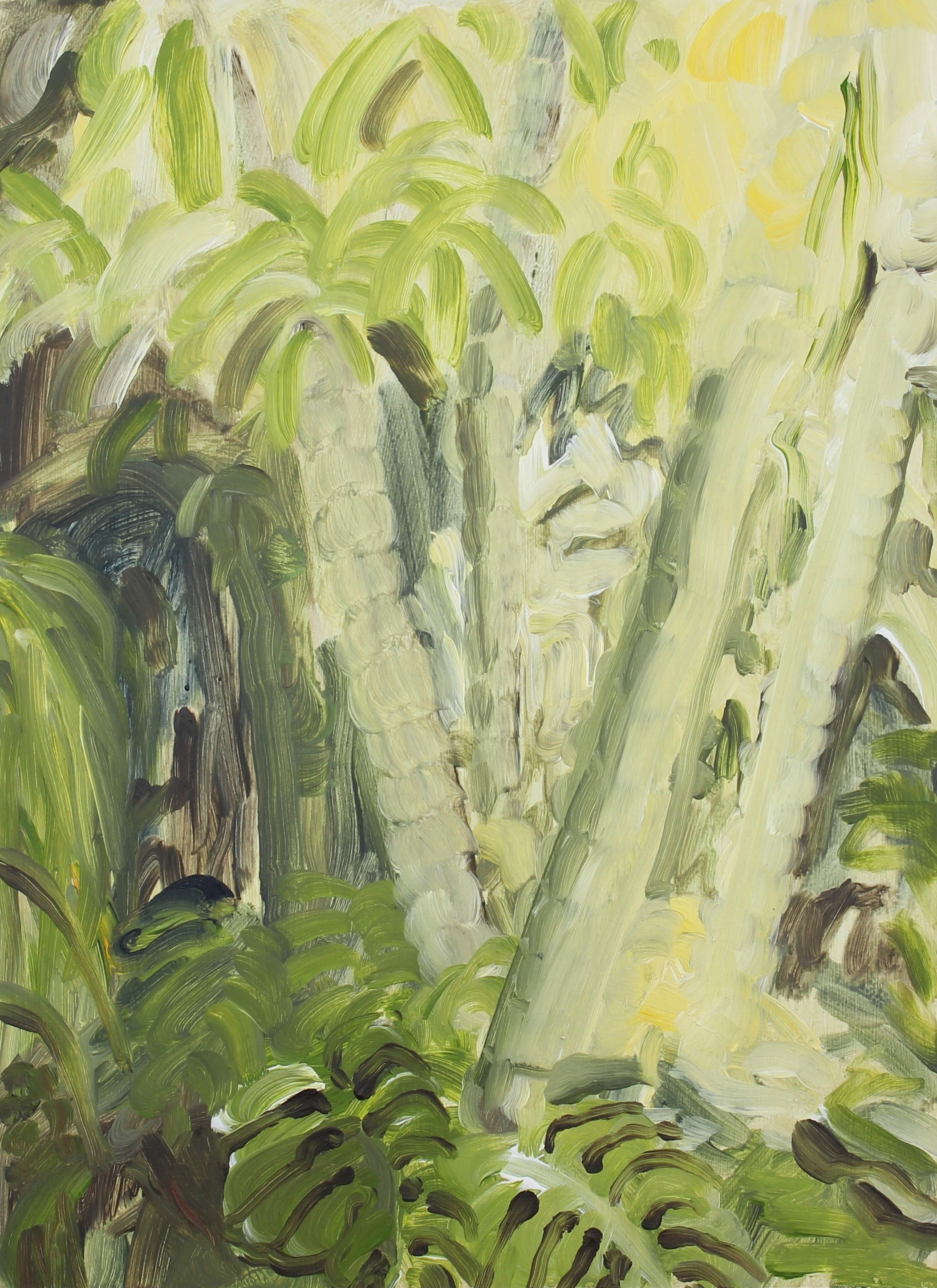 Jessica Skowroneck | Jungle morning, 2018
